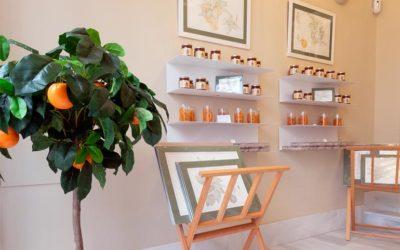 Orangitas, dulces de naranja amarga en el corazón de Sevilla | Publicación ABC